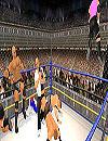waptrick.one Wrestling Revolution 3D