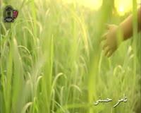 حبيبي يا رسول الله فيديو كليب