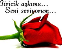 one love 1
